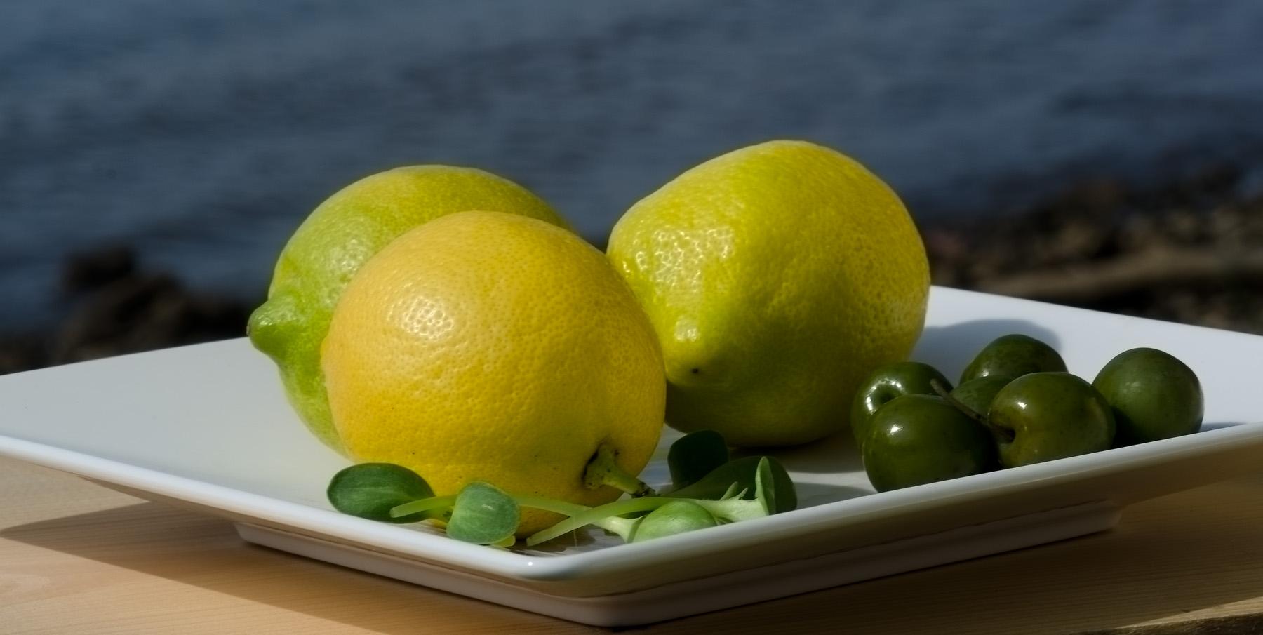 Lemons and Olives - image by Lisa Missenda